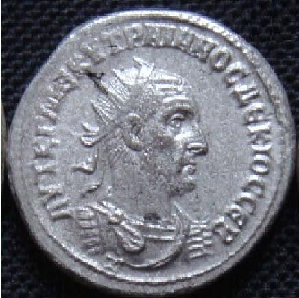 Tétras d'Antioche 21410