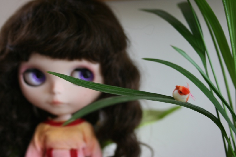 demoiselle Blythe chez Claicile ! une petite nouvelle  p 3 Img_2737