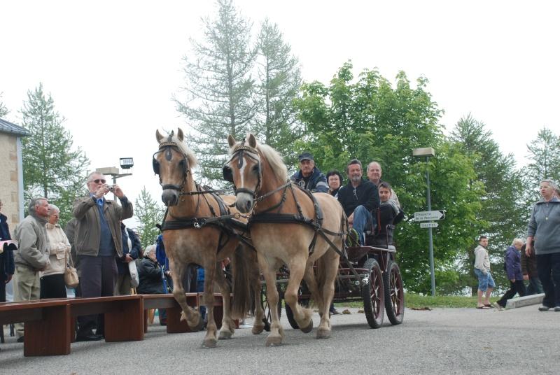 Cavalcades Pèlerines, les 22, 23 et 24 Août 2014, à Notre Dame de La Salette (Isère) Dsc_0210