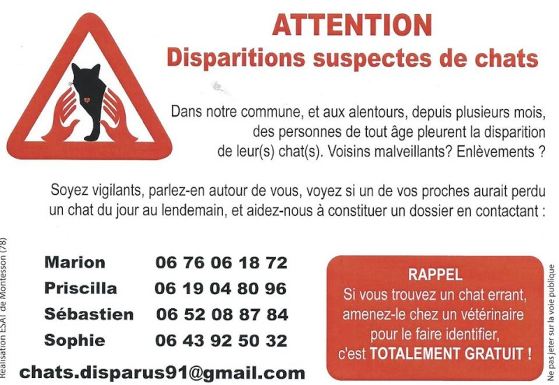 ALERTE disparitions suspectes de chats 10245210
