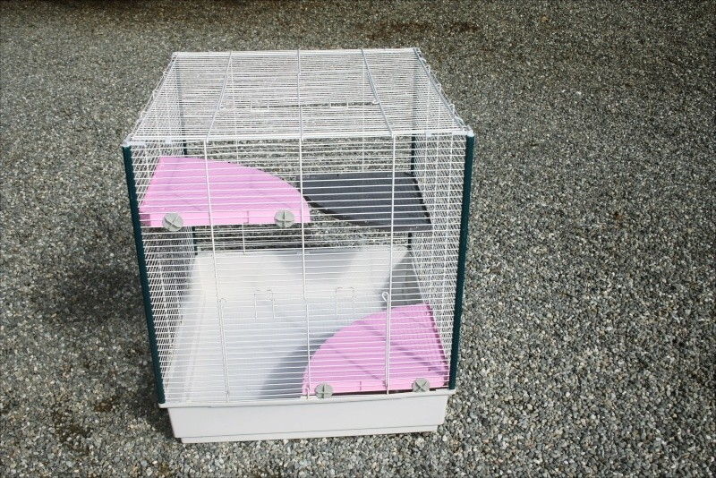 Cages à vendre dans le 64 Img_2810