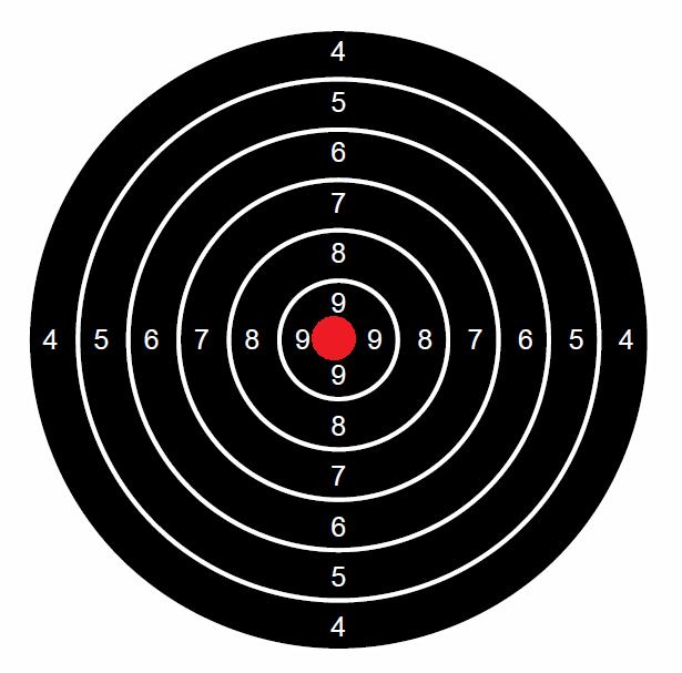 """Concours permanent bimestriel """"groupement & 100pts"""" sur cible CC A4 : Mai Juin 2014 Neuf310"""