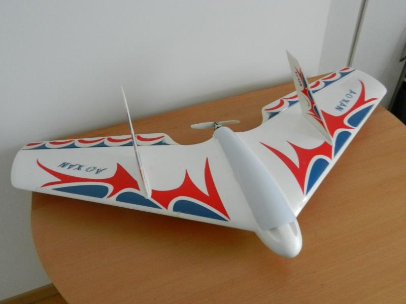 Ziggy Mini Wing ! Dscn5410