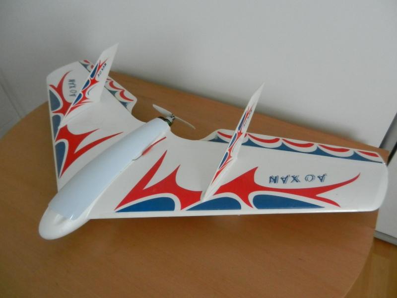 Ziggy Mini Wing ! Dscn5411