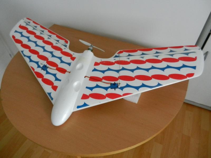 Ziggy Mini Wing ! Dscn5413