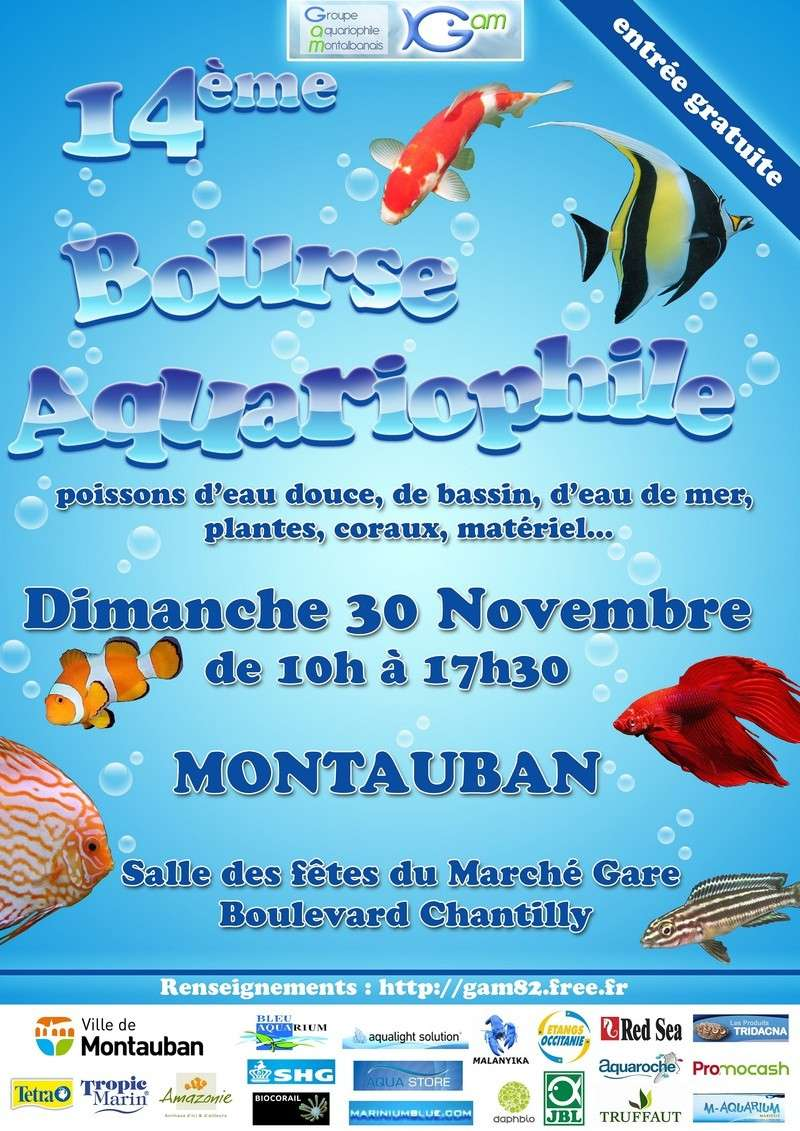 Bourse  de Montauban 88379_10