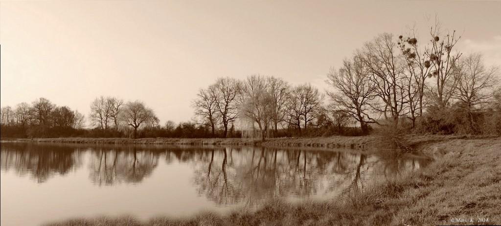 Ambiance d'automne + 1  ( m.à.j. 15 12 ) 210