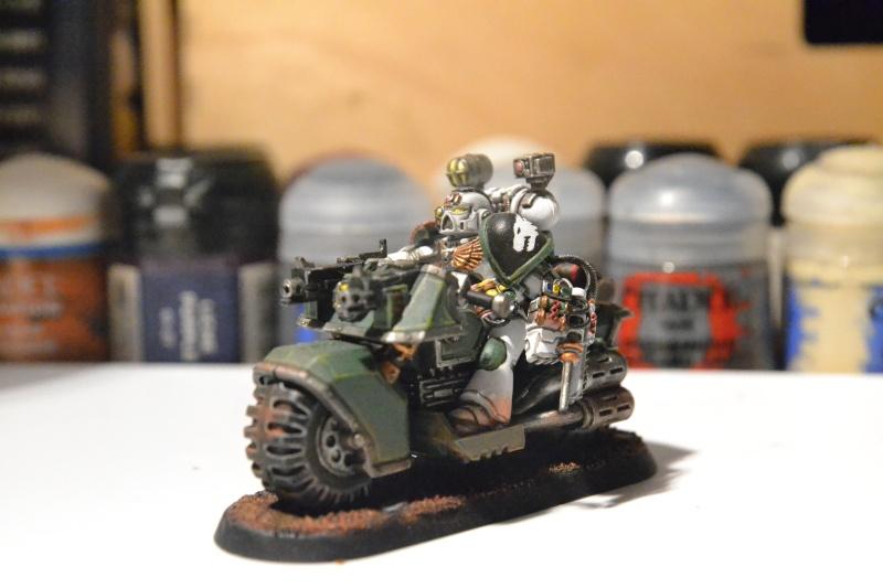 Armée Salamanders Apothi10