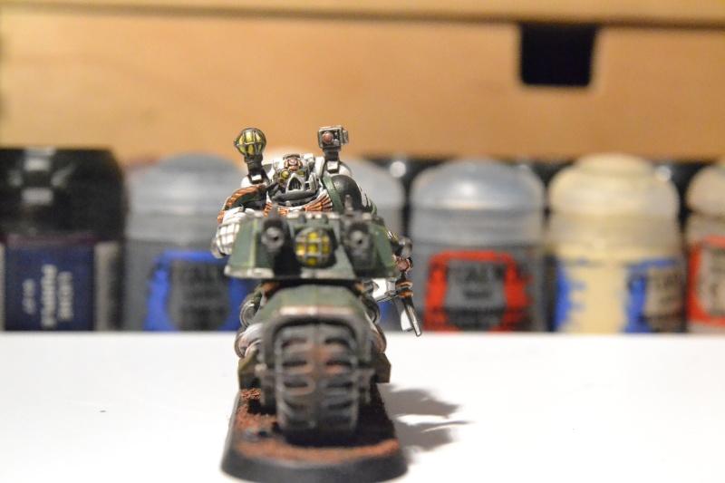 Armée Salamanders Apothi11