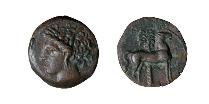 Les bronzes grecs de Brennos - Page 2 Siculo10