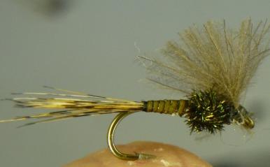 Pêcher qu'en sèche ? P1070816
