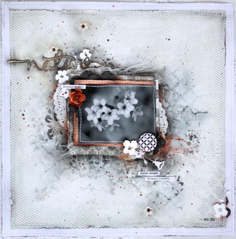 Août 2014 Défi ADS #61 - Soupçon d'orange brûlé par Maryse22 - Page 3 Img_9314
