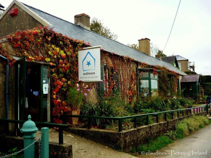 Magie Irlandaise - Tome 3 : Le coeur de la mer de Nora Roberts Ardmor10