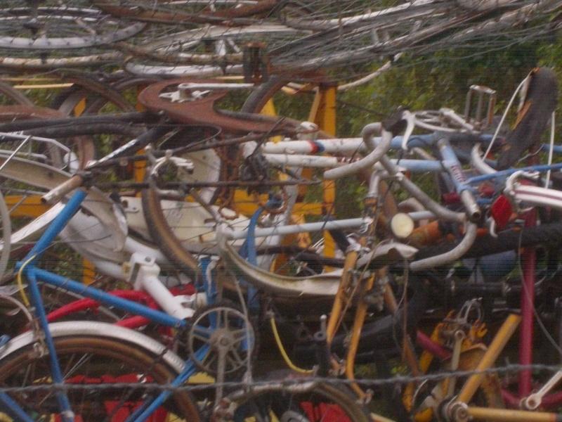 Anjou Vélo Vintage 2014 - Page 19 2014-111