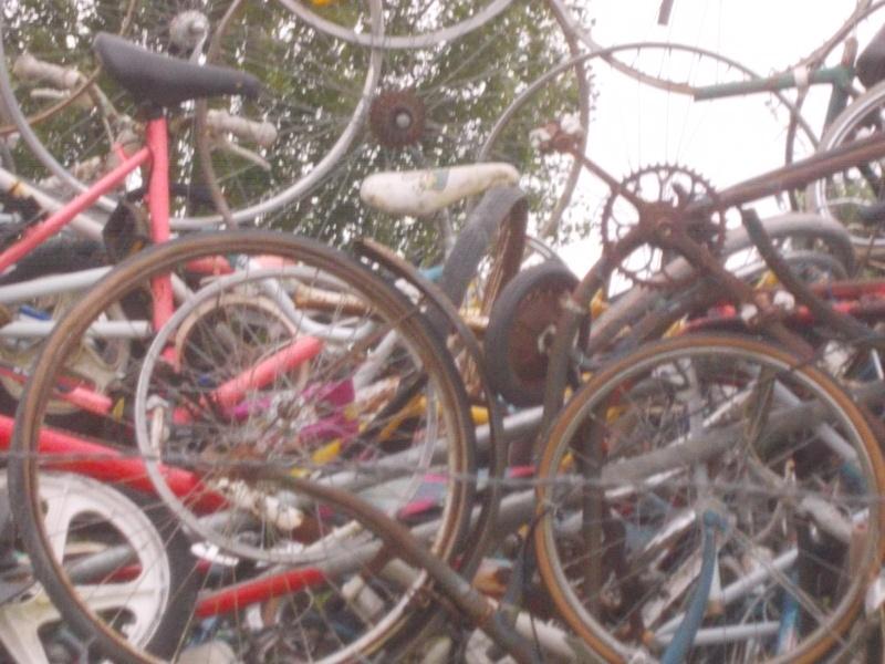 Anjou Vélo Vintage 2014 - Page 19 2014-112