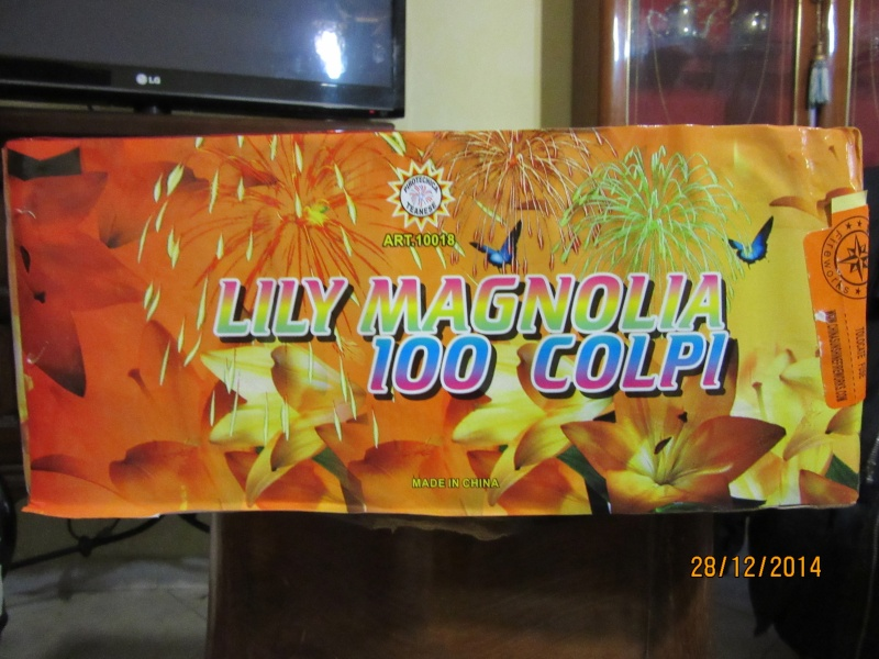 LILLY MAGNOLIA 100 CP Lilly_10