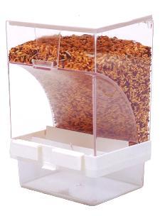 perruches qui jettent pleins de graines parterre  89237-10