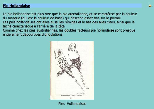 ♥ Pipotte et Saxo ♥ - Page 2 Captur16