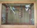 Votre opinion sur ce modèle de cage Ferplast Dscf3111