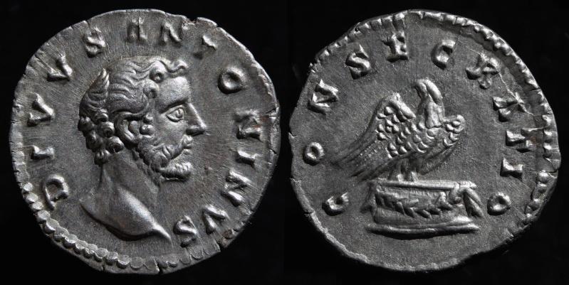 Les roy... romaines de Punkiti92 - Page 10 Antoni11
