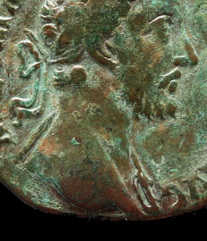 Les roy... romaines de Punkiti92 - Page 11 Detail10