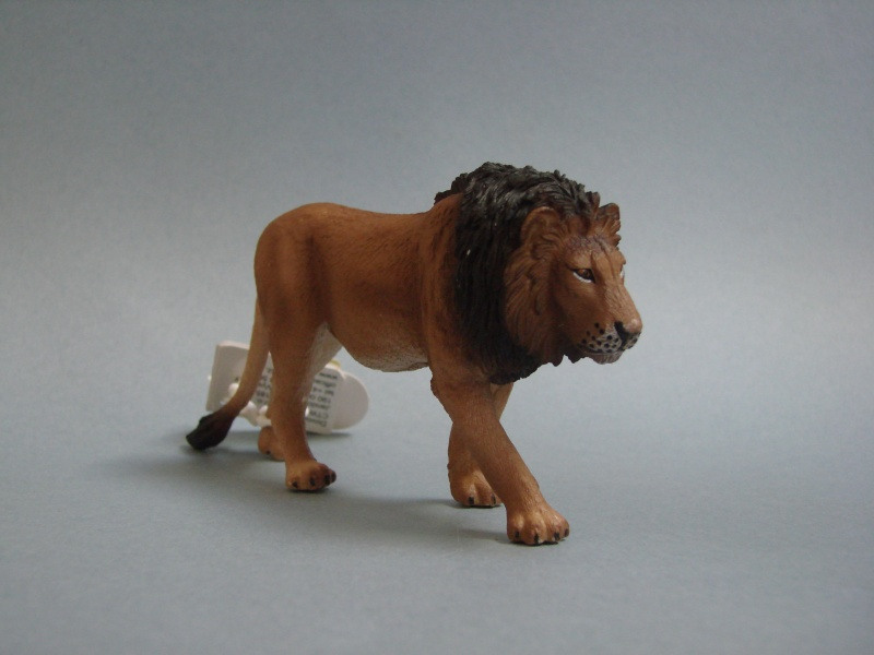 Mojo Fun lion & lioness 2014 walkaround Dsc00257