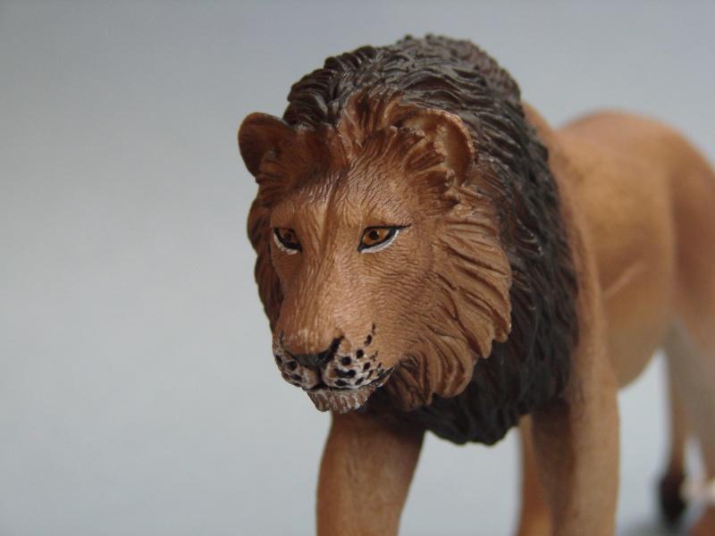 Mojo Fun lion & lioness 2014 walkaround Dsc00258