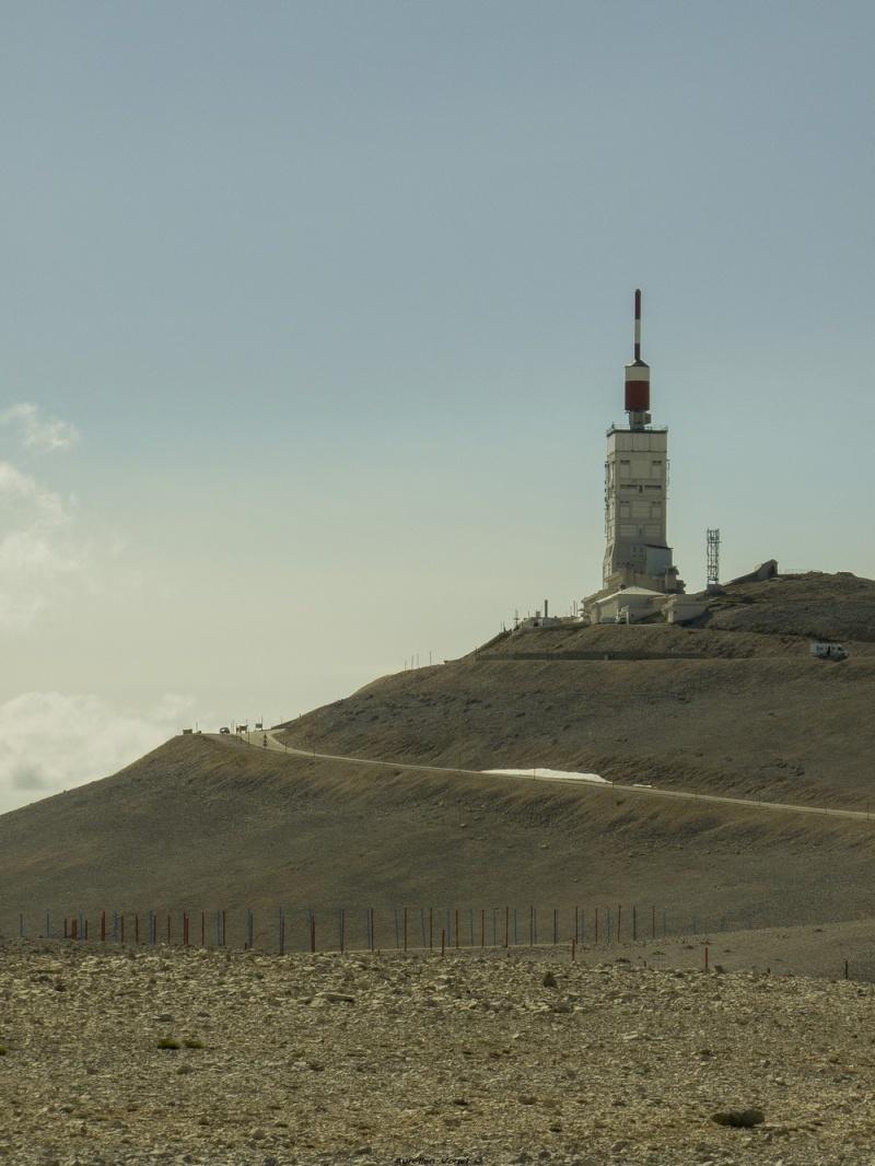 Mont Ventoux - 12 Mai 2014 P1160014