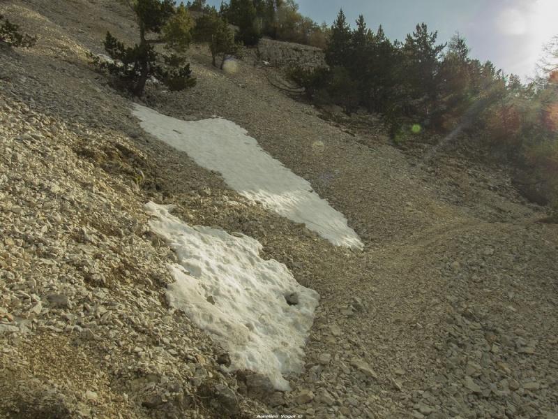Mont Ventoux - 12 Mai 2014 P1160025