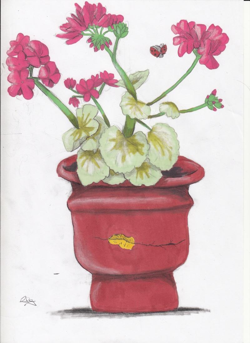 Les petites fleurs :D Img_0014