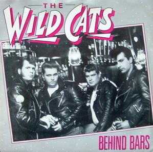 The Wildcats - Wildcats  Dsc07011