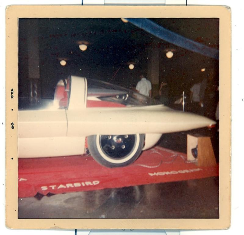 Futurista - Darrill Starbird Starbi10
