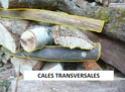 Une meule pour stocker son bois : D15