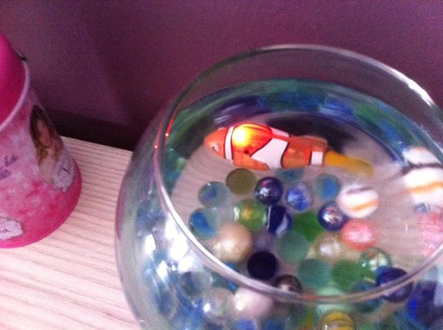 robot fish Photo_12