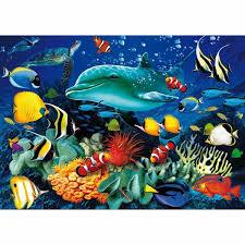 mon nouvel aquarium  - Page 2 Images11