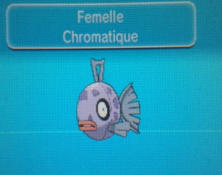 » Le pokédex chromatique du forum 20140624