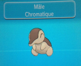 » Le pokédex chromatique du forum 20140636