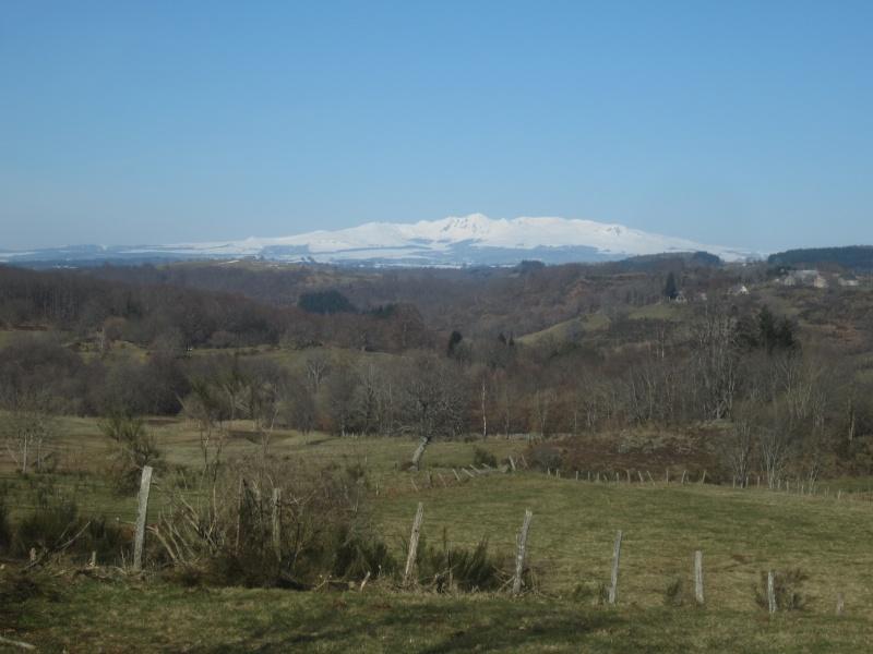 Riom-Es-Montagnes et alentours - Page 2 Fabie145