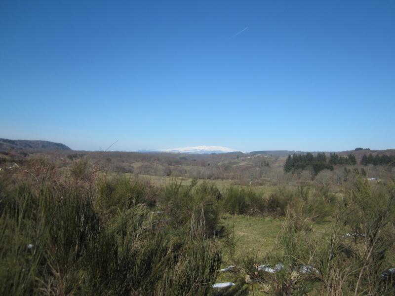 Riom-Es-Montagnes et alentours - Page 2 Fabie146