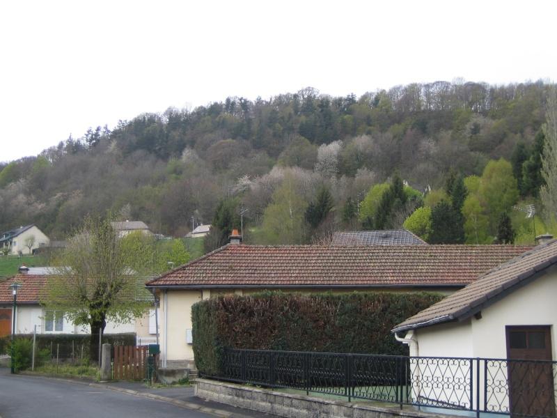 Riom-Es-Montagnes et alentours - Page 2 Fabie192
