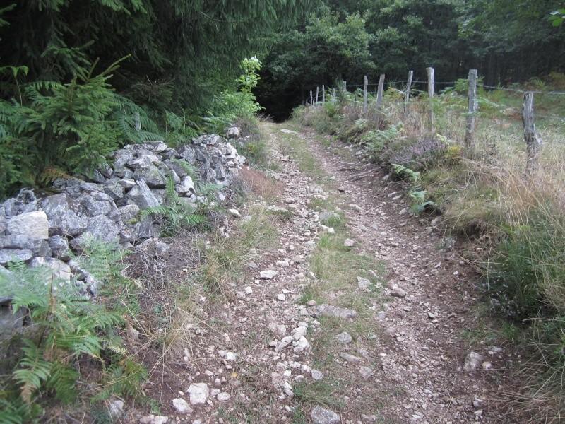 Riom-Es-Montagnes et alentours Fabien24