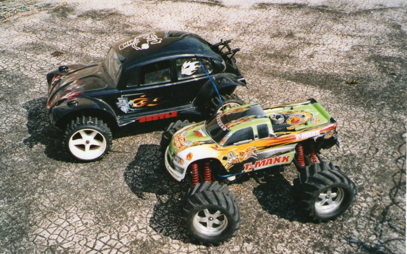 Fg,Monster Beetle ,1/6,thermique - Page 2 Img11510