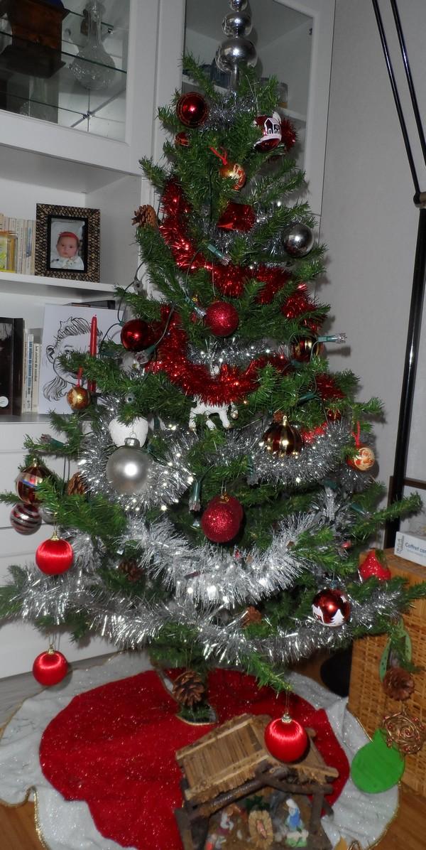 Votre arbre de Noël! Sam_2910