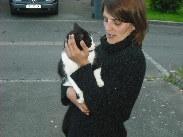 Noé chat noir et blanc mai 2012 FIV+ (ADPK35) 14167710