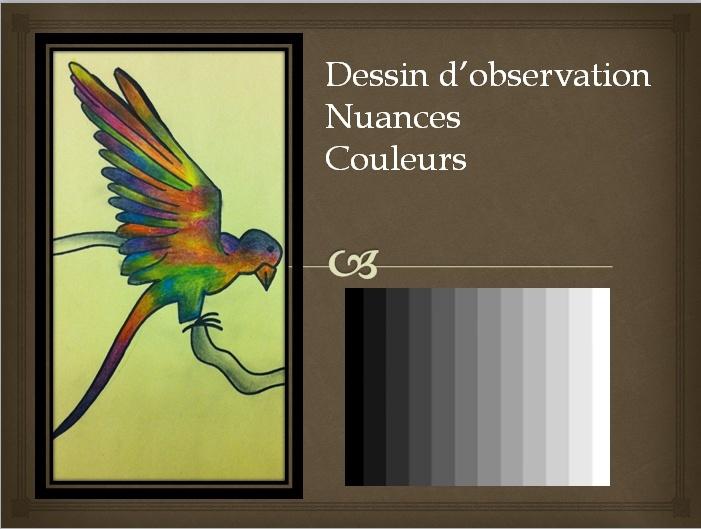 DESSIN OBSERVATION  Num_110
