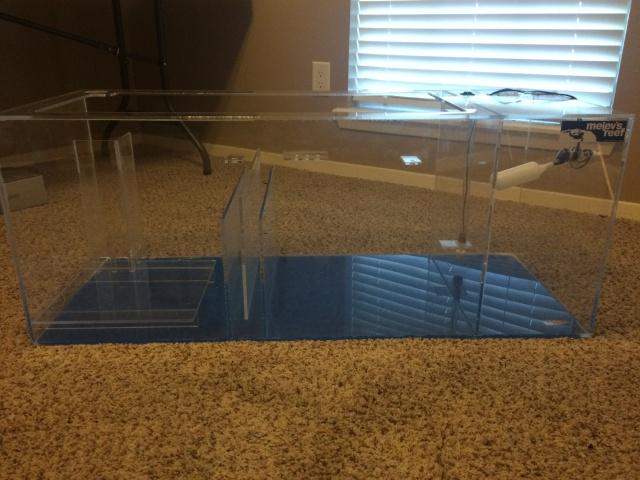 Troy's Cheap Aquarium Liquidation Sale Img_0113