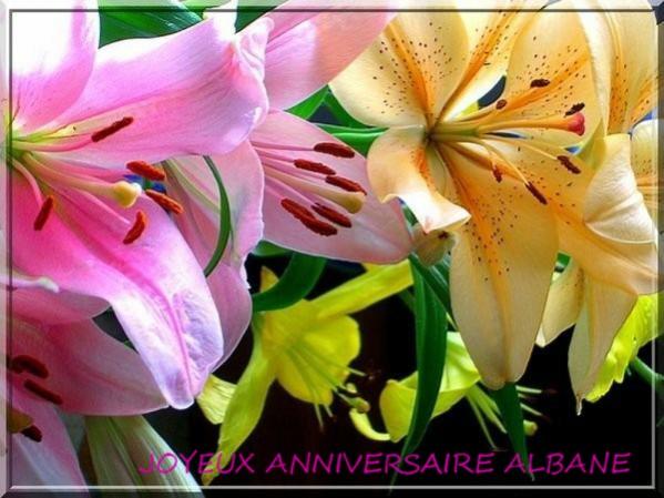 Bon anniversaire Albane ! 4acba110