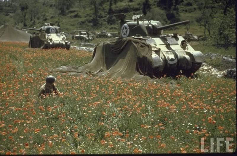 Album photo des Forces Françaises libre 10363910