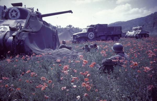 Album photo des Forces Françaises libre 10530710