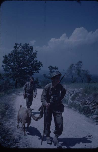 Album photo des Forces Françaises libre 10574410